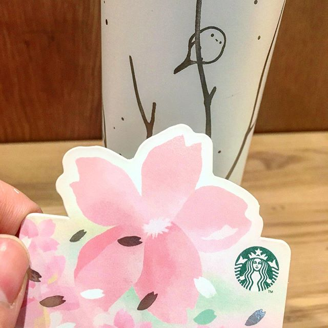 【桜の季節だ!】スタバでスタバっぽい接客をされてご満悦のわたくしです……。桜のカード(昨日買ったばかりの今シーズンのもの)を褒められ、エナガのタンブラーを褒められ、へへっとなりつつ着席なう。こっからひと仕事しまあす!がんばるぞぉ